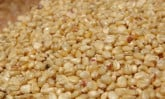 dried-corn