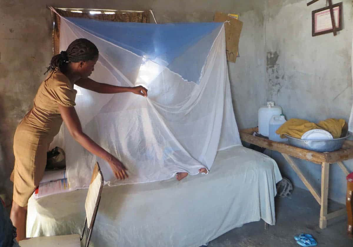 Zika Virus in the Americas Mosquito net