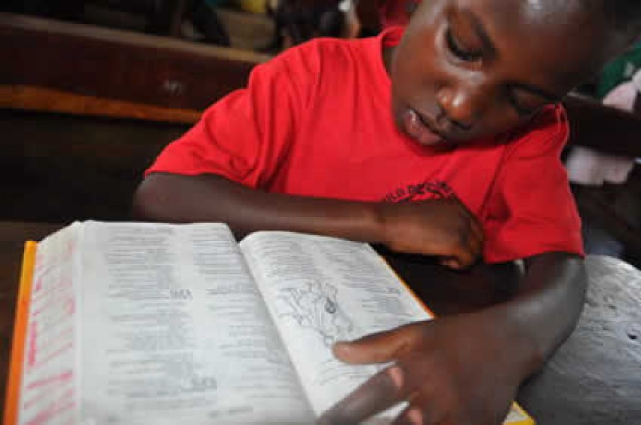 A child in a red shirt reading the Bible
