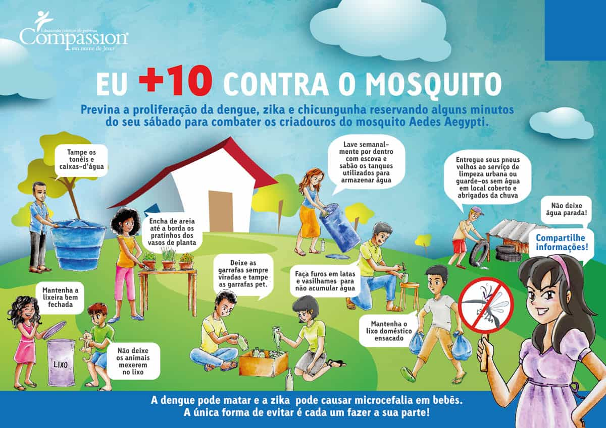 Zika Virus in Brazil Pregnancy Flyer