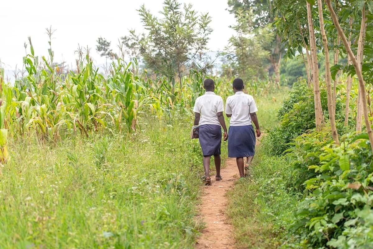Two girls walk together on a dirt path on the way to school.