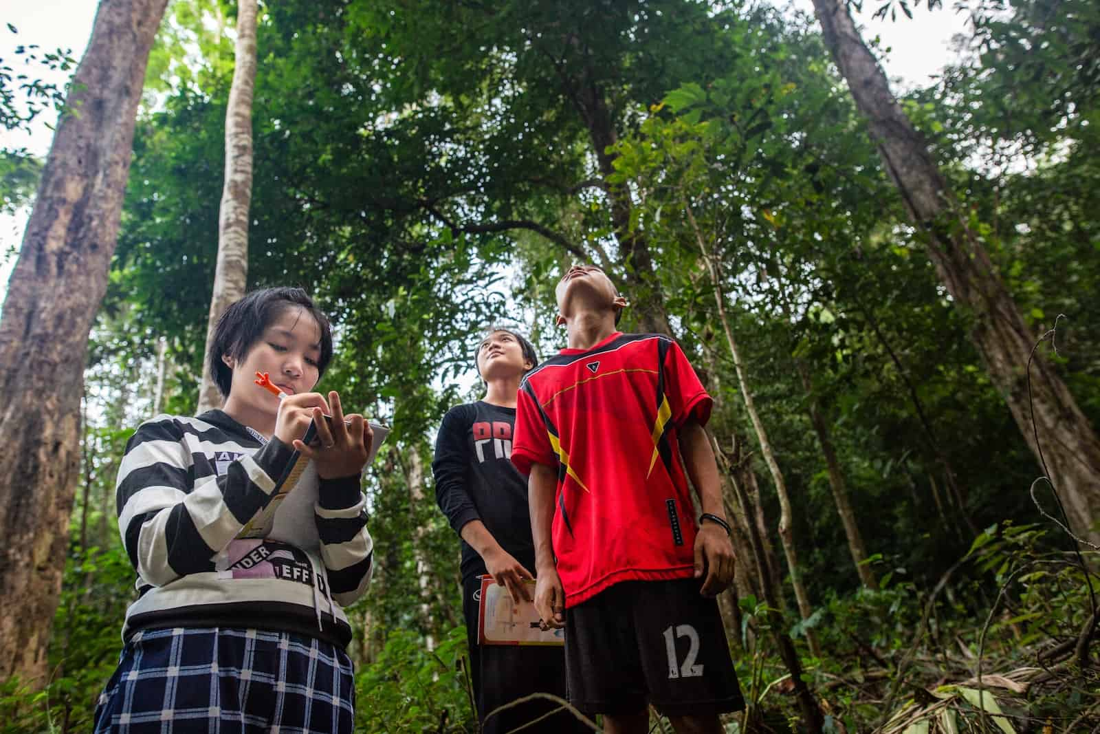 Three teenagers, two girls and a boy, stand in a green forest. One looks down, writing in a book, and two look up at the trees.