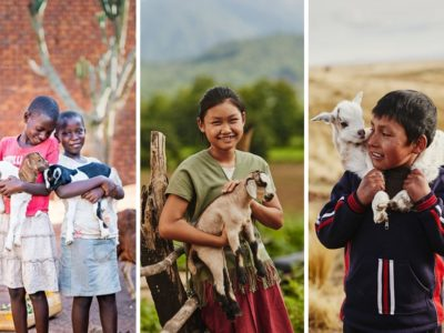 A collage of three pictures of children standing outside holding goats.