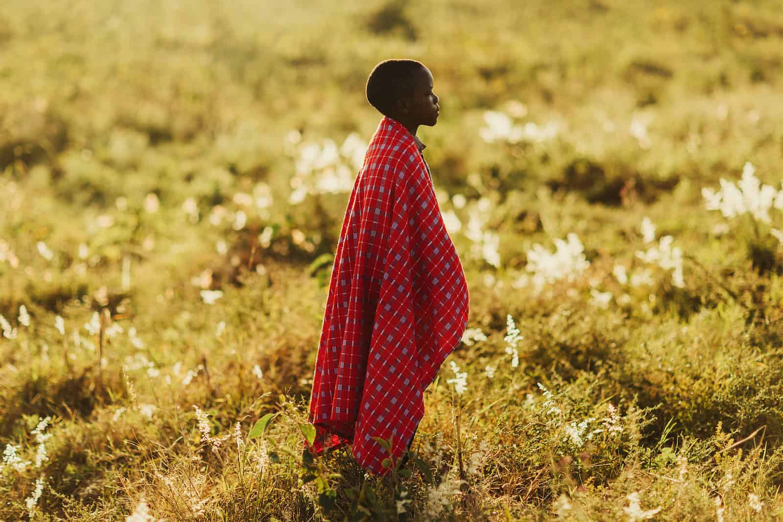 A boy in a red checked blanket stands in a golden field, looking into the distance.