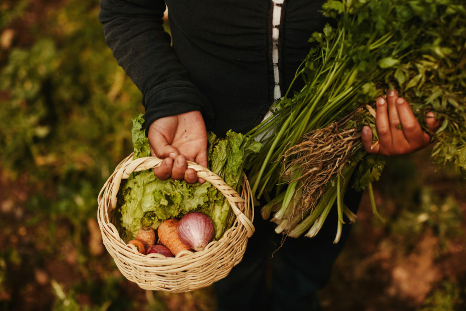 A girl holds a basket full of vegetables and holds vegetables in her arms.