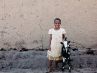 A girl in a white dress stands next to a black and white goat.