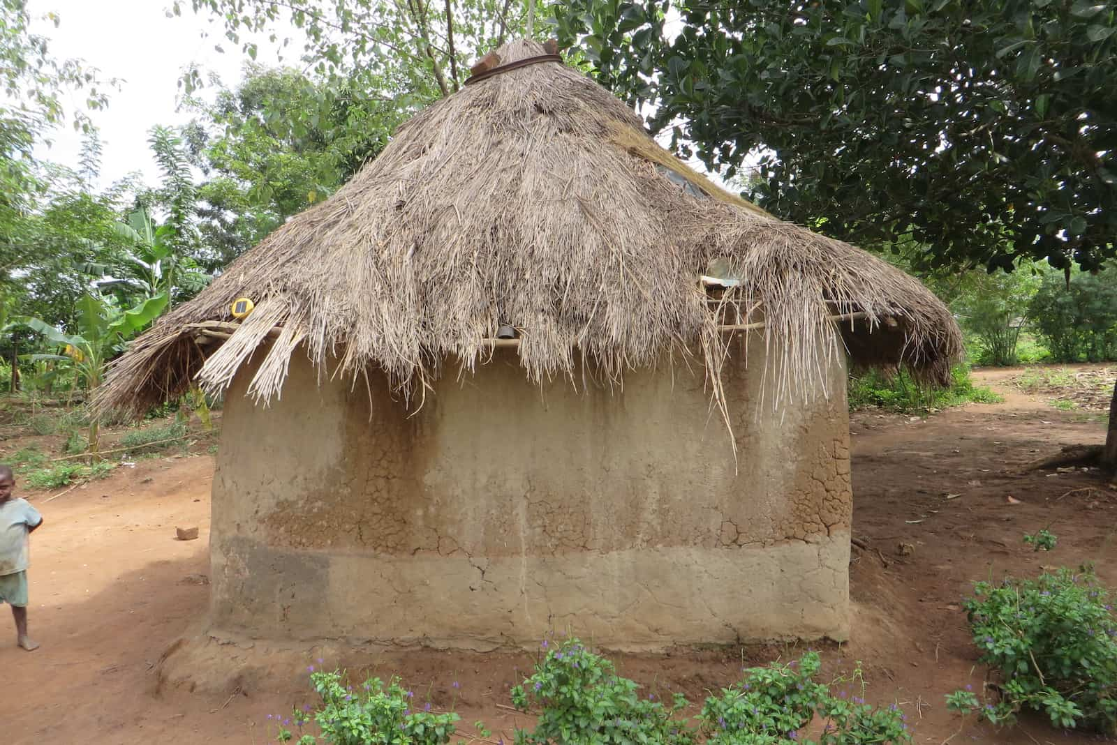 A small round mud home with a thatched roof.