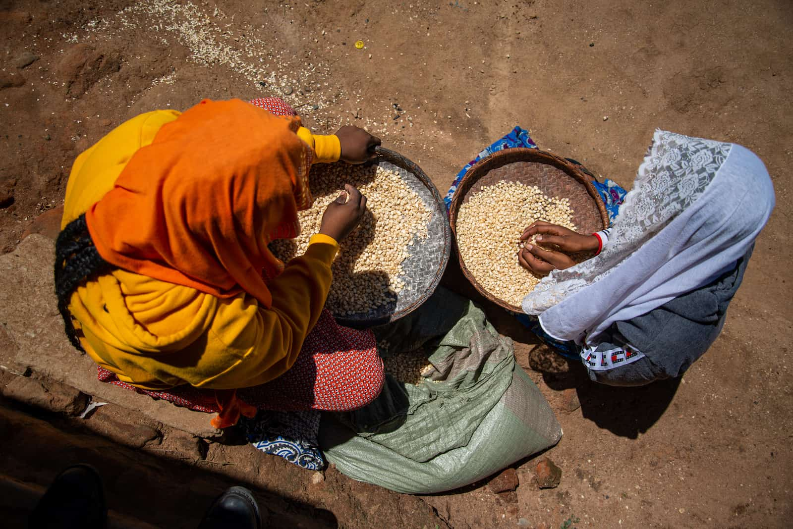 A photo of two girls from above, both sitting on the ground sorting grains.