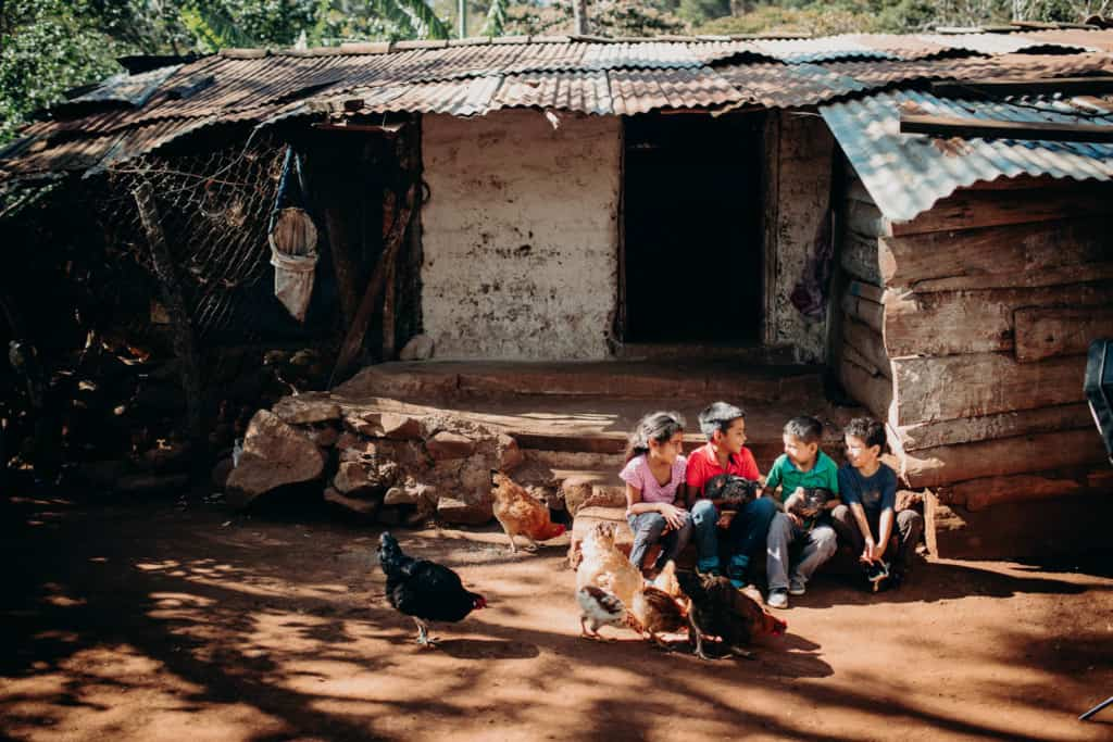 Children sitting on the steps in front of a building looking at each other and holding chickens. There are more chickens on the ground in front of them. The building is made of wood, corrugated metal an concrete.