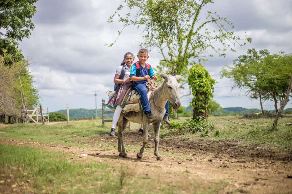Dilan and Dianis are going to school on their family's donkey that serves as their transportation. They are wearing their school uniforms and backpacks. They are traveling on a dirt road.