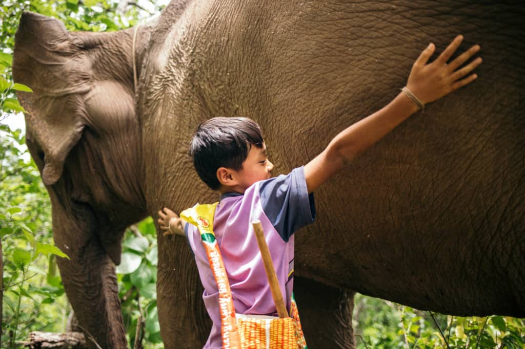 Boy wearing a purple shirt with a yellow bag around his shoulders. He is next to his elephant and is hugging the elephant.
