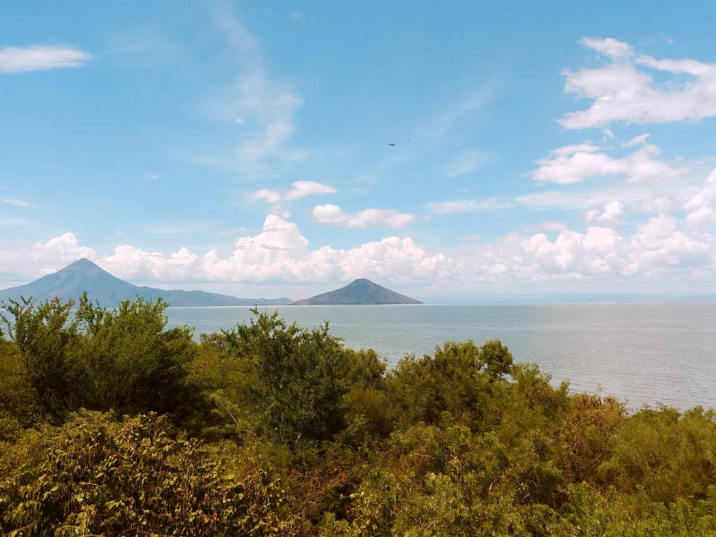 Landscape of the sea with trees in the foreground and mountains in the background.
