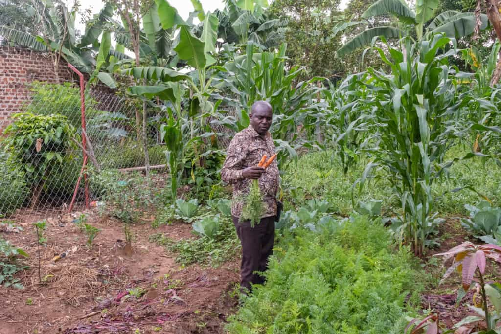 Pastor Cyrus is wearing a brown patterned shirt and brown pants. He is holding carrots and is standing in a garden he planted during the pandemic as part of a food security program.