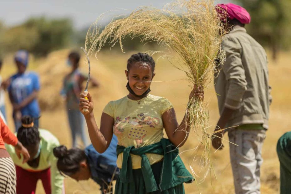 A girl wearing a yellow shirt is holdng a sickle in one hand and a plant she harvested in her other hand. Other people are behind her and are helping with the harvest.