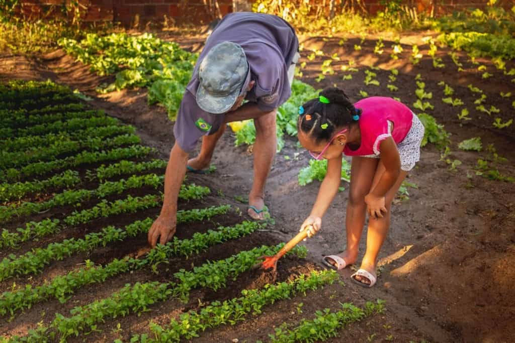 Paula is wearing a bright pink shirt. She is standing in the field and is working in her garden.